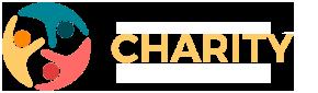 DEMO 13 Logo
